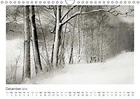 Into the Forest (Wall Calendar 2019 DIN A4 Landscape) - Produktdetailbild 12