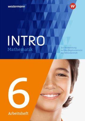INTRO Mathematik SI - Arbeitsheft 6