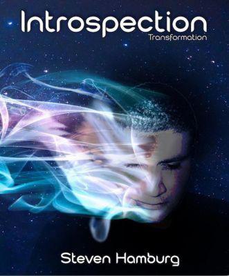 Introspection: Transformation, Steve Hamburg