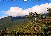 Irdisches Paradies (Wandkalender 2019 DIN A3 quer) - Produktdetailbild 3