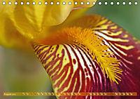 Iris - mondäne Gartenschönheit (Tischkalender 2019 DIN A5 quer) - Produktdetailbild 8