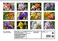 Iris - mondäne Gartenschönheit (Wandkalender 2019 DIN A3 quer) - Produktdetailbild 13