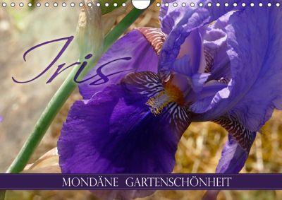 Iris - mondäne Gartenschönheit (Wandkalender 2019 DIN A4 quer), Christine B-B Müller