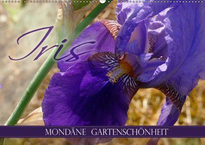 Iris - mondäne Gartenschönheit (Wandkalender 2019 DIN A2 quer), Christine B-B Müller