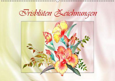 Irisblüten Zeichnungen (Wandkalender 2019 DIN A2 quer), Dusanka Djeric