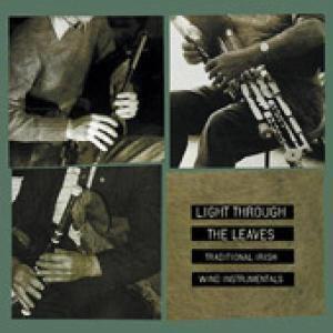 Irish Traditional Music In America, Diverse Interpreten