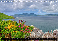 IRLAND Kerry (Tischkalender 2019 DIN A5 quer) - Produktdetailbild 6