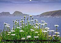 IRLAND Kerry (Wandkalender 2019 DIN A2 quer) - Produktdetailbild 4