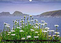IRLAND Kerry (Wandkalender 2019 DIN A3 quer) - Produktdetailbild 4