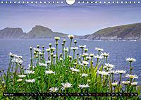 IRLAND Kerry (Wandkalender 2019 DIN A4 quer) - Produktdetailbild 4