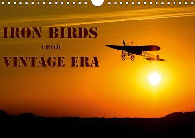 Iron birds from vintage era (Wall Calendar 2019 DIN A4 Landscape), Andy D.