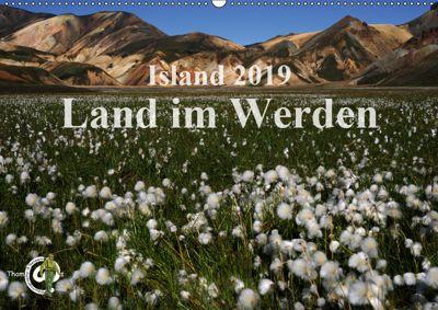 Island 2019 - Land im Werden (Wandkalender 2019 DIN A2 quer), Thom@sPhotography