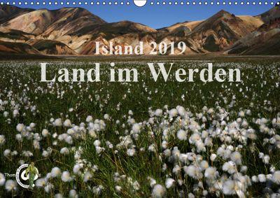 Island 2019 - Land im Werden (Wandkalender 2019 DIN A3 quer), Thom@sPhotography