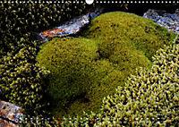 Island 2019 - Land im Werden (Wandkalender 2019 DIN A3 quer) - Produktdetailbild 6