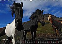 Island 2019 - Land im Werden (Wandkalender 2019 DIN A3 quer) - Produktdetailbild 5