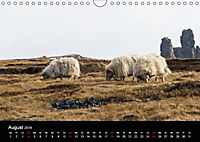 Island im Frühling - Snæfellsnes (Wandkalender 2019 DIN A4 quer) - Produktdetailbild 8