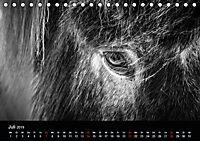 Island in Schwarzweiß (Tischkalender 2019 DIN A5 quer) - Produktdetailbild 7