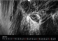 Island in Schwarzweiß (Wandkalender 2019 DIN A3 quer) - Produktdetailbild 1