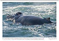 Island: zwischen Wasserfällen und Vulkanen 2019 (Wandkalender 2019 DIN A2 quer) - Produktdetailbild 8
