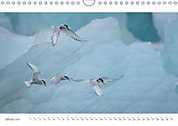 IslandFarben. 63°- 66°N Nordisches Farbenspiel auf Island (Wandkalender 2019 DIN A4 quer) - Produktdetailbild 1