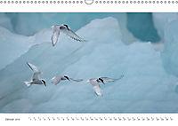 IslandFarben. 63°- 66°N Nordisches Farbenspiel auf Island (Wandkalender 2019 DIN A3 quer) - Produktdetailbild 1