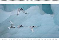 IslandFarben. 63°- 66°N Nordisches Farbenspiel auf Island (Wandkalender 2019 DIN A2 quer) - Produktdetailbild 1