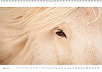 IslandFarben. 63°- 66°N Nordisches Farbenspiel auf Island (Wandkalender 2019 DIN A2 quer) - Produktdetailbild 6