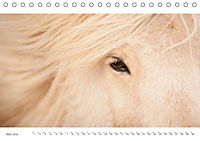 IslandFarben. 63°- 66°N Nordisches Farbenspiel auf Island (Tischkalender 2019 DIN A5 quer) - Produktdetailbild 6