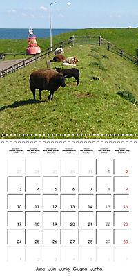 Isle of Texel (Wall Calendar 2019 300 × 300 mm Square) - Produktdetailbild 6
