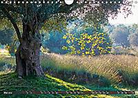 ISTRIEN (Wandkalender 2019 DIN A4 quer) - Produktdetailbild 5