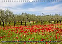 ISTRIEN (Wandkalender 2019 DIN A4 quer) - Produktdetailbild 6