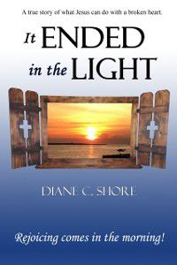 It Ended in the Light, Diane C. Shore