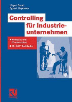 IT-Professional: Controlling für Industrieunternehmen, Jürgen Bauer, Egbert Hayessen