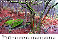 Jakobsweg - Camino Portugues Central (Tischkalender 2019 DIN A5 quer) - Produktdetailbild 11