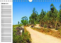 Jakobsweg - Camino Portugues Central (Wandkalender 2019 DIN A4 quer) - Produktdetailbild 4