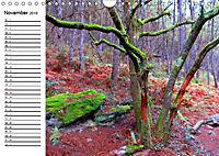 Jakobsweg - Camino Portugues Central (Wandkalender 2019 DIN A4 quer) - Produktdetailbild 11