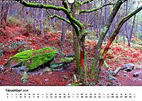 Jakobsweg - Camino Portugues Central (Wandkalender 2019 DIN A3 quer) - Produktdetailbild 11