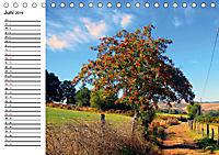 Jakobsweg - Camino Primitivo (Tischkalender 2019 DIN A5 quer) - Produktdetailbild 6