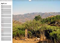 Jakobsweg - Camino San Salvador (Wandkalender 2019 DIN A3 quer) - Produktdetailbild 4