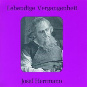 Josef Herrmann, Josef Herrmann