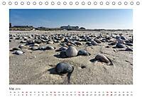 JUIST 2019 - strandsüchtig - (Tischkalender 2019 DIN A5 quer) - Produktdetailbild 5