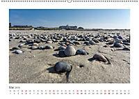 JUIST 2019 - strandsüchtig - (Wandkalender 2019 DIN A2 quer) - Produktdetailbild 5