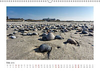JUIST 2019 - strandsüchtig - (Wandkalender 2019 DIN A3 quer) - Produktdetailbild 5