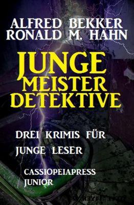 Junge Meisterdetektive, Alfred Bekker, Ronald M. Hahn