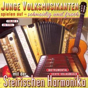Junge Volksmusikanten spielen, Diverse Interpreten