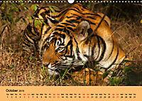 Just Bengal Tigers (Wall Calendar 2019 DIN A3 Landscape) - Produktdetailbild 10