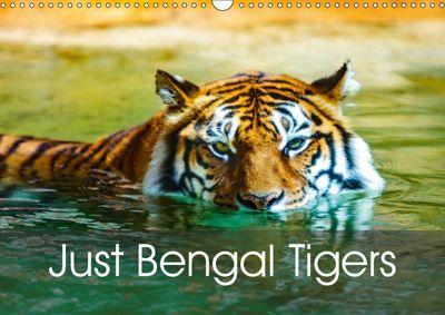Just Bengal Tigers (Wall Calendar 2019 DIN A3 Landscape), Dalyn