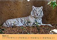 Just Bengal Tigers (Wall Calendar 2019 DIN A3 Landscape) - Produktdetailbild 3