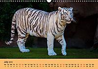 Just Bengal Tigers (Wall Calendar 2019 DIN A3 Landscape) - Produktdetailbild 7