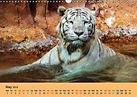 Just Bengal Tigers (Wall Calendar 2019 DIN A3 Landscape) - Produktdetailbild 5